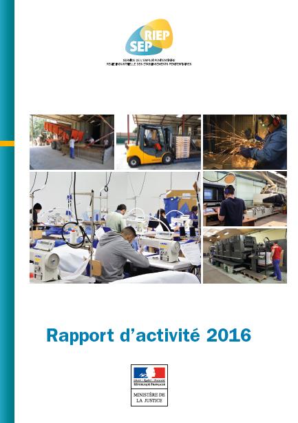 Rapport activité SEP-RIEP 2016