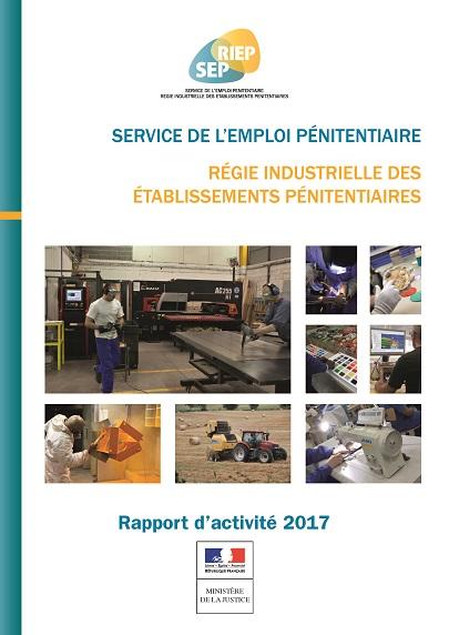 Rapport activité SEP-RIEP 2017